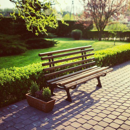 bench-791852_1920